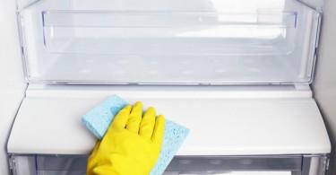 Limpando Geladeira Frost Free