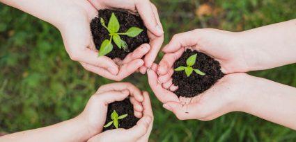 Atitudes sustentáveis para adotar na rotina