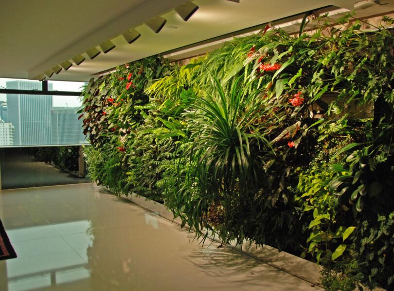 Como fazer jardim vertical